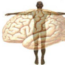 Psychosomatic illness and origins in the brain