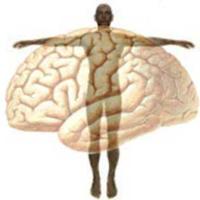 Psychosomatic illness and origins in the brain